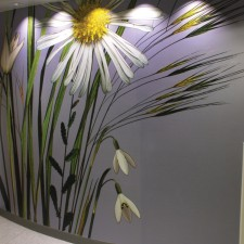 Digitally printed wall graphics
